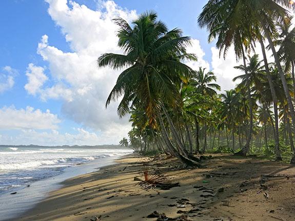 Playa coson upclose